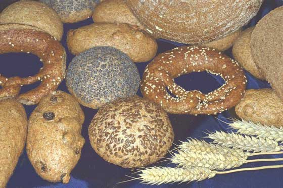 Some of the wholemeal bakery products according to the original recipes of Dr. J. G. Schnitzer
