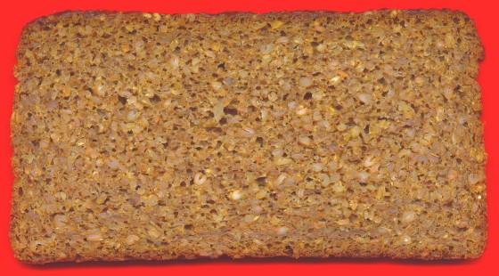 Ein echtes Bio-Vollkornbrot - gebacken von Mestemacher (Gütersloh)